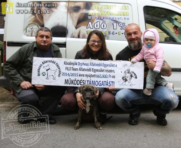 Állatmentők támogatása