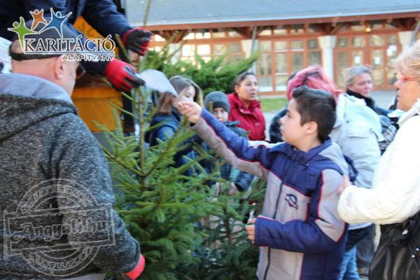 Fenyőfa osztás nélkülöző családok számára