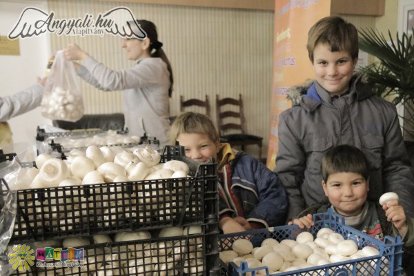 Élelmiszer osztást támogattunk