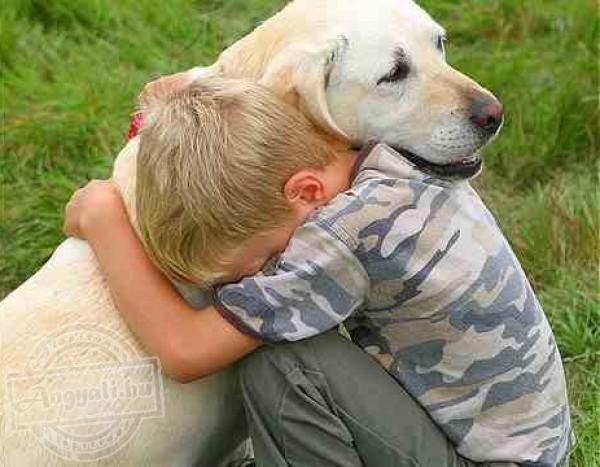 Kutyával segíthető lelki terápia!
