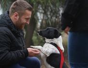 Gyulai Állatvédő Egyesület - Állatvédelem, állatmentés