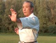 Magyarországi Wado-ryu Karate Szövetség - Sport szervezet
