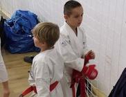 Budofight Karate Klub - Sport, mozgás