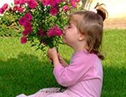 Titkos Kert Alapítvány - Tartósan beteg gyermekek és családjaik támogatása