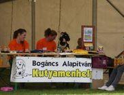 Bogáncs Kisállatotthon Alapítvány - Állatvédelem, állatmentés