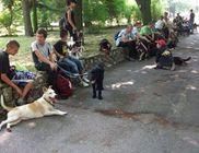 Élettér Állat- és Természetvédő Egyesület - Állatvédelem, állatmentés, természetvédelem