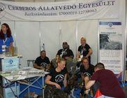 Cerberos Állatvédő Egyesület - Állatvédelem, állatmentés