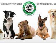 Mentsvár az Állatokért és Környezetünkért Kiemelkedően Közhasznú Alapítvány - Állatvédelem, környezetvédelem