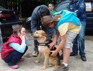 Sirius Állat- és Természetvédelmi Alapítvány - Állatvédelem, természetvédelem