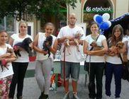 Szolnok Városi Állatotthon - Állatmentés, állatvédelem
