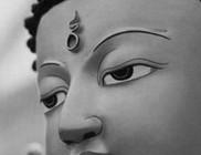 Tibet-Európa Alapítvány - Kulturális tevékenység