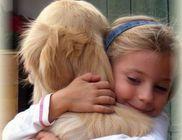 Retriever Rescue Fajtamentő Egyesület - Állatvédelem, fajtamentés