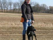 Csömöri Állatvédő Civil Szervezet - Állatvédelem, állatmentés