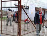 Orosházi Állat-és Természetvédő Közhasznú Egyesület - Állatvédelem, természetvédelem