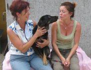 Assisi Szent Ferenc Állatmenhely Alapítvány - Állatmentés, állatvédelem
