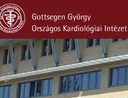 Gottsegen György Alapítvány - Egészségügyi intézmény támogatása