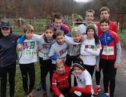 Vágta Triatlon Sportegyesület - Sporttevékenység