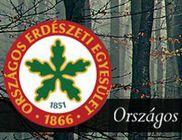 Országos Erdészeti Egyesület - Erdészeti tevékenység