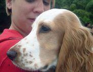 Kutyával az Emberért Alapítvány - Rehabilitáció, állatterápia