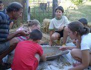 Független Ökológiai Központ Alapítvány - Természet- és környezetvédelem