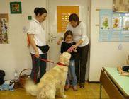 Közelebb az Állatokhoz Közhasznú Alapítvány - Állatterápia