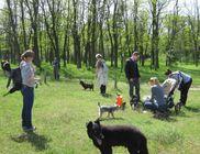 Amina Állatvédelmi Központ Alapítvány - Állatvédelem