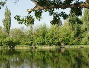 Tavirózsa Környezet- és Természetvédő Egyesület - Környezetvédelem, természetvédelem