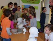 Magyar Természettudományi Múzeumért Alapítvány - Természettudomány támogatása
