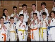 Veszprémi Shotokan Karate Klub - Sport tevékenység