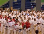 Shotokan Karate Közhasznú Önvédelmi Sportegyesület - Sporttevékenység