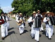 Bánát Szerb Kulturális Egyesület - Kulturális tevékenység