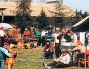 Magyarországi Német Juhászkutya Klub - Kiképzés, tartás irányítása