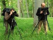 Vadvilág Magyar Természetfotósok Egyesülete - Természetfotózás, ismeretterjesztés