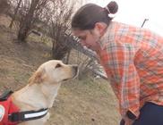 Hajdúsági Vakvezető- és Segítőkutya Képzésért Alapítvány - Segítő kutya kiképzés