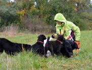 Etyeki Állatvédők Egyesülete - Állatmentés